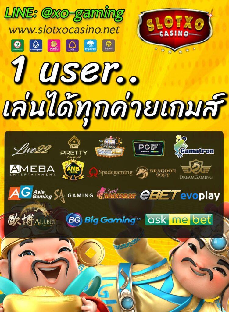 1-user