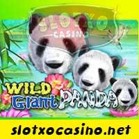 Wil Gian Panda